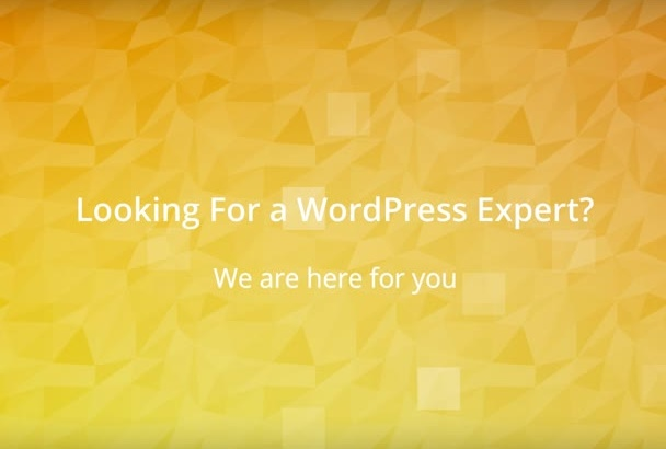 install WORDPRESS, Themes, Plugins or Fix Issues Instantly