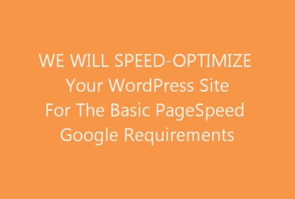 basic speed optimize your WordPress site for google PageSpeed