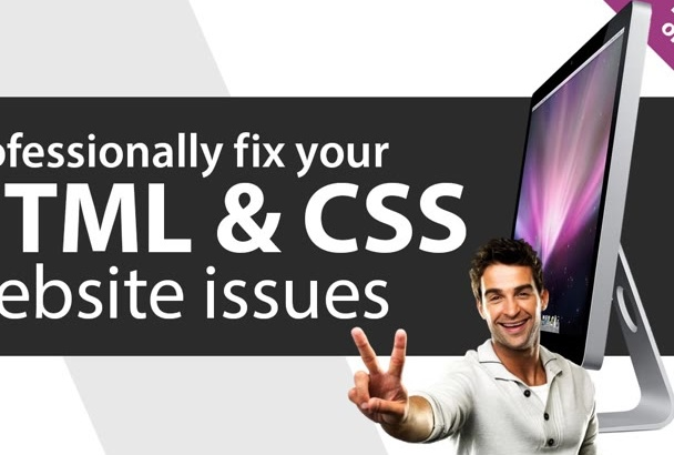 professionally FIX or customize your website