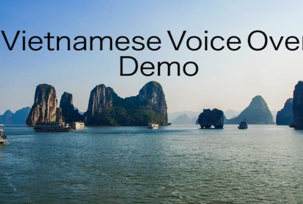do Vietnamese voice over and Vietnamese translation