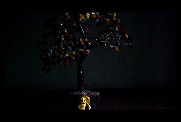 create amazing intro video
