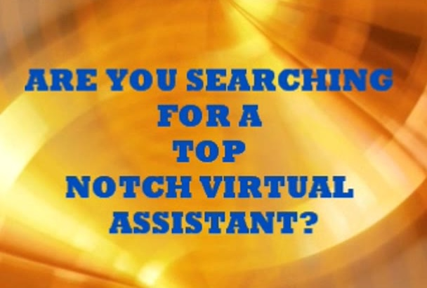 be your amazing virtual assistant for 3 hours