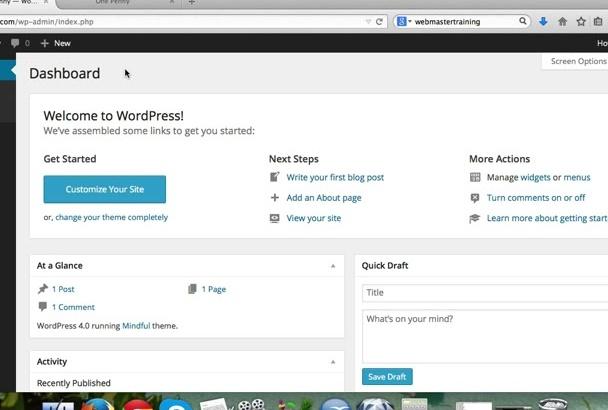teach You WordPress In 45 videos plus Bonuses