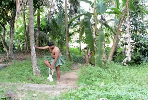 climb king coconut tree and find your website or any message