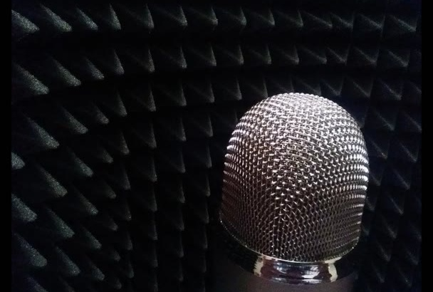 provide you with up to 180 words of great Dutch voice over