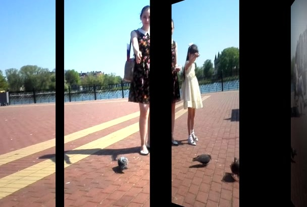 send you a video of my daughter feeding pigeons