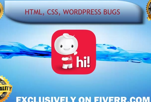 fix your any html, css, wordpress bugs