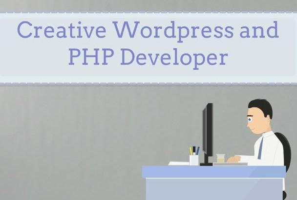 wordpress Plugin,widget or fix any problem