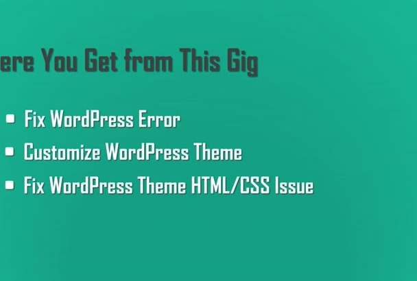 fix WordPress error, customize theme and fix css issue