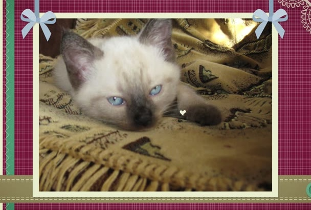 design a CUTE slideshow in scrapbooking style