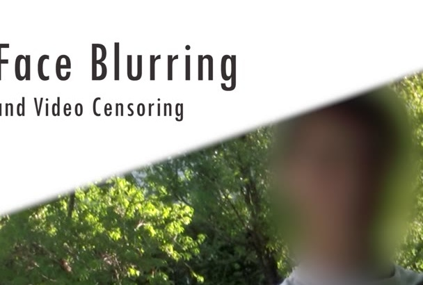blur faces, objects, or anything else in your video
