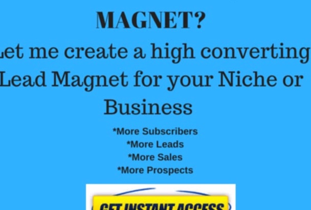 create high converting lead magnet for your audience