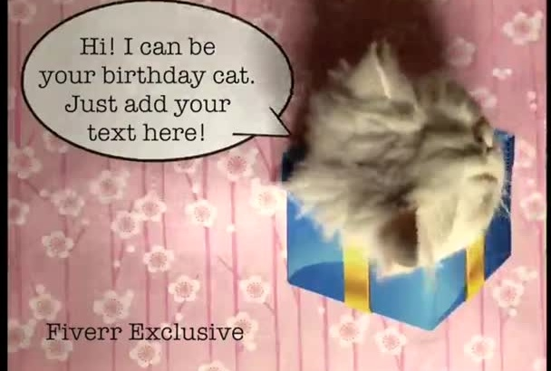 record my cat break through your birthday card