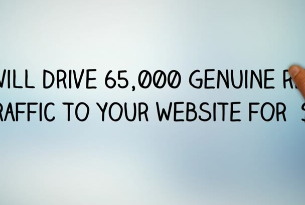 drive 65,000 targeted,website,traffic, real,visitors,adult