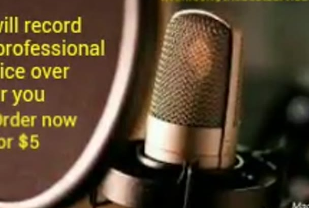 record a professional female voice over for you