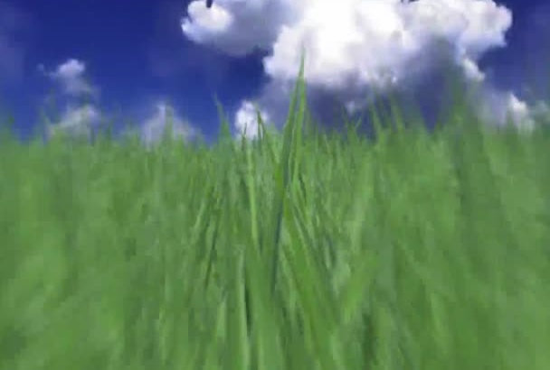 fly your logo thru grassy field up into the sky