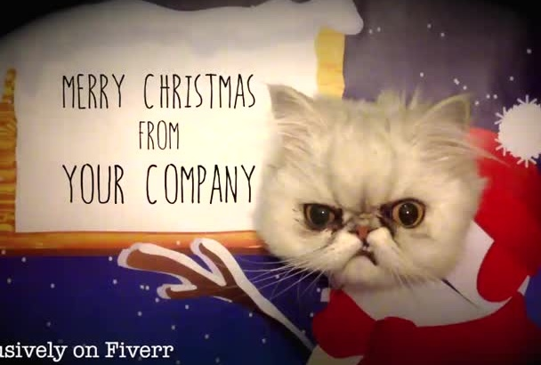 make a christmas cat video for your business