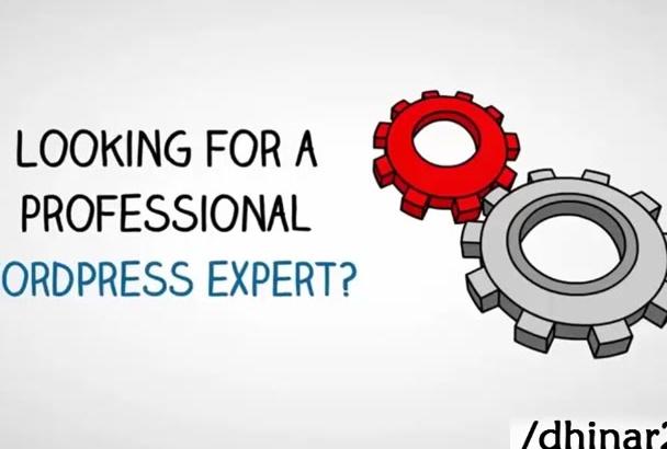 create a wordpress website, fix wordpress issues