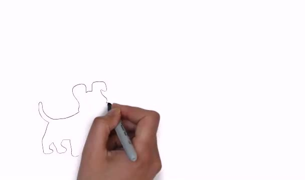 create white board animation videos for you