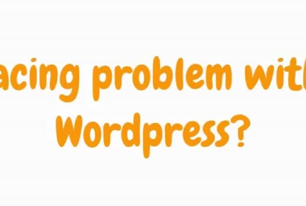 wordpress error,customize theme with in 24 hours