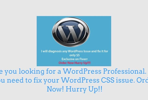 fix WordPress,CSS issue perfectly and revision available