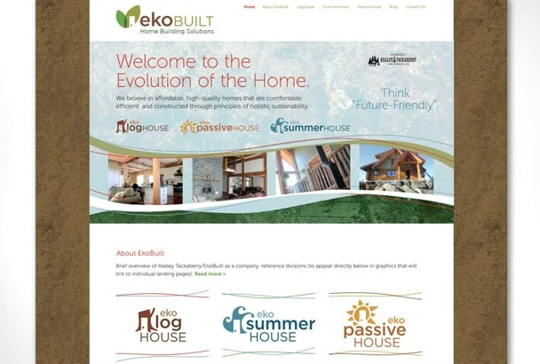 design Complete WordPress Website for you