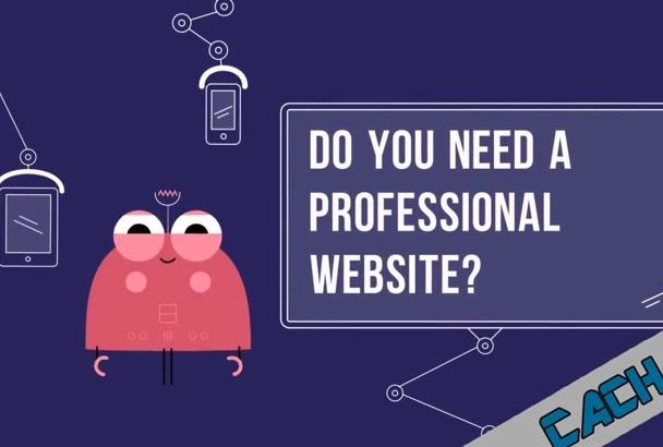 create a professional website and app for you