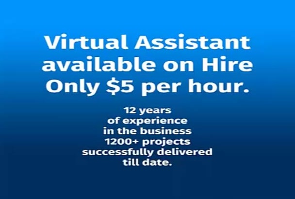 be a virtual assistant for any kind of job