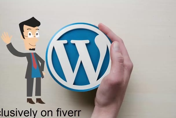 build a professional wordpress website for you