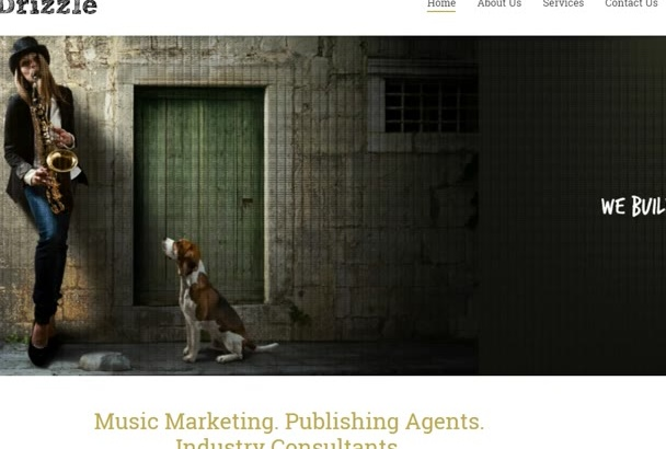 provide music business consulting by phone or Skype