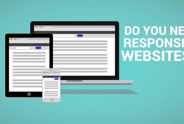 build professional responsive WordPress website