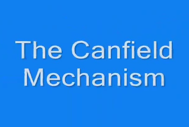 work on a mechanism,  complex 3D object or product design