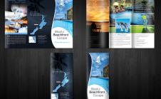 design attractive brochure or FLYER small2