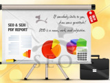 write a Manual SEO Report on your site problems