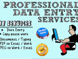 do long time data entry , copy and paste from website or pdf to excel or word