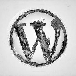wordpressfixer1