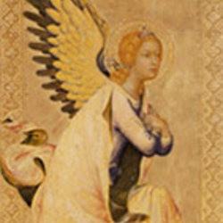 angelsaround