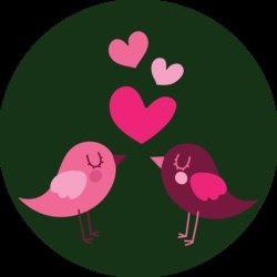 design_bird