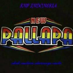 new_pallapa