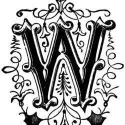 walterpinem