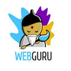 webguru494
