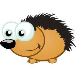 cool_hedgehog