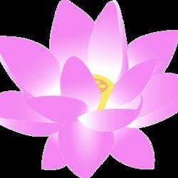 lotusmuse