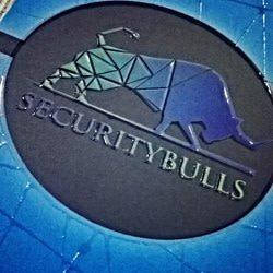 securitybulls