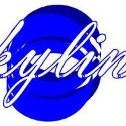 skylinkmedia