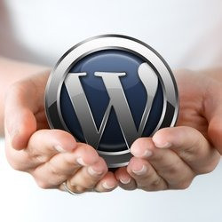 wordpress_prof
