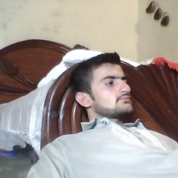 mehran_ali