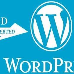 wordpress_ch