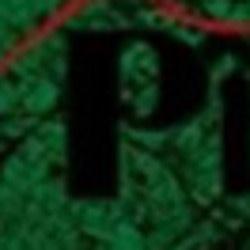 purnota99