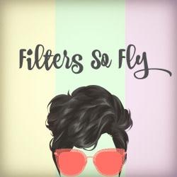 flyfilters